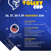 Viana Volley Cup